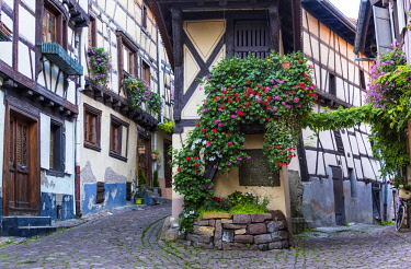 """FRA10238AW The cobbled streets and half-timbered houses of the medieval village Eguisheim, member of the """"The most beautiful villages of France"""", Alsatian Wine Route, France"""