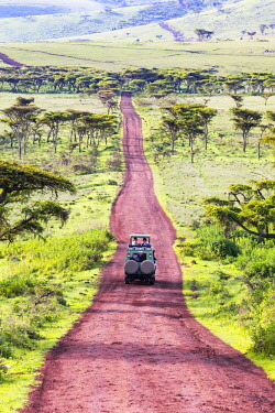 TZ3715AW A 4-wheel drive safari vehicle drives along a red track near the Ngorongoro Crater, Tanzania