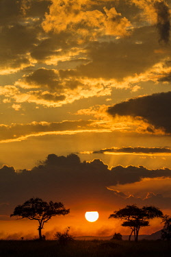 TZ3576AW Tanzania, Serengeti National Park. Sunrise over the southern plains of the Serengeti.
