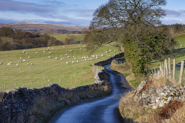 ENG15458AW England, North Yorkshire, Burnsall. Country lane between Burnsall and Hebden in the Yorkshire Dales.