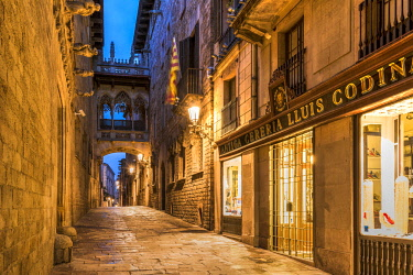 SPA7515AW Night view of Carrer del Bisbe street with the picturesque Pont del Bisbe bridge, Gothic Quarter, Barcelona, Catalonia, Spain