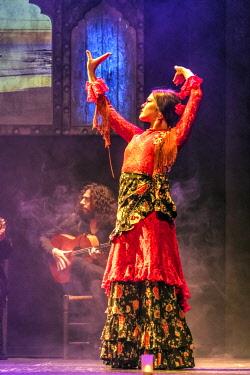 SPA7562AW Flamenco dancer, Madrid, Community of Madrid, Spain