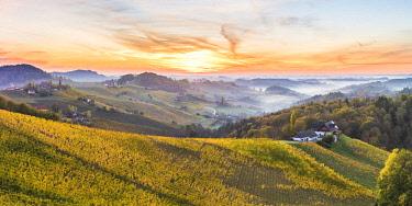 CLKAC82843 Sunrise in wine region. Spicnik, Kungota, Drava region, Slovenia.