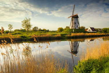 BEL1803AW Hoeke Windmill Reflecting in Canal, Damme, Belgium