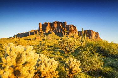 USA13119AW Superstition Mountains, Phoenix, Arizona, USA