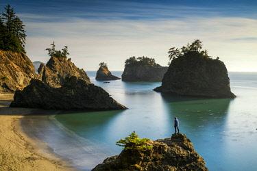 USA13307AW Person Overlooking Secret Beach, Samuel H. Boardman State Scenic Corridor, Oregon, USA