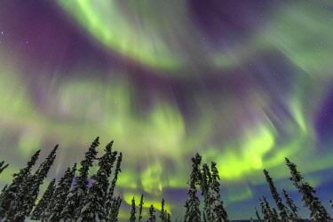 US02SWR0329 Aurora borealis, Northern Lights, near Fairbanks, Alaska