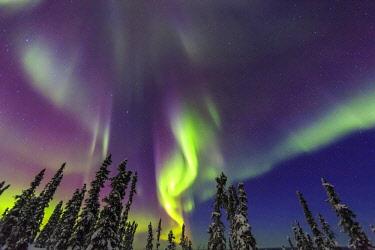 US02SWR0332 Aurora borealis, Northern Lights, near Fairbanks, Alaska
