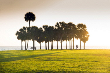 US11919 Florida, Saint Petersburg, Pinellas County, Sunrise, Vinoy Park, Waterfront, Tampa Bay