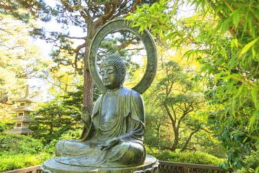 US05SWR0388 Japanese Tea Garden, Golden Gate Park, San Francisco, California, USA