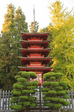 US05SWR0430 Japanese Tea Garden, Golden Gate Park, San Francisco, California, USA