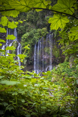 RE01109 Reunion island (French overseas department), Parc National de La Reunion (Reunion National Park) Waterfall