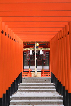 JAP1353AW Torii gates at Ichinomiya shrine, Kobe, Kansai, Japan