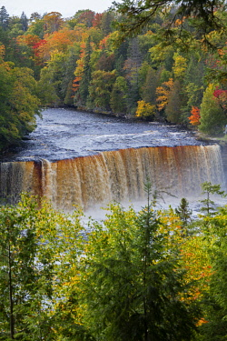 US23JWI0129 Michigan, Tahquamenon Falls State Park, Upper Falls