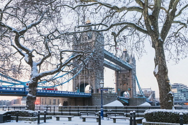 TPX64316 England, London, Southwark, Tower Bridge in the Snow