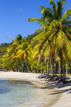 SVG01297 St Vincent and The Grenadines, Mustique, Brittania Bay beach