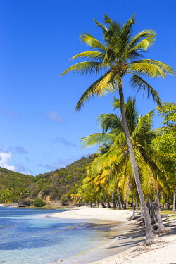 SVG01298 St Vincent and The Grenadines, Mustique, Brittania Bay beach