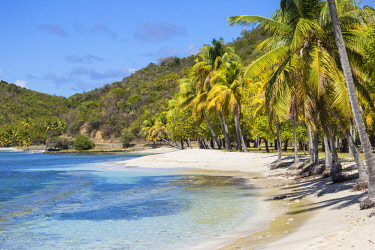 SVG01299 St Vincent and The Grenadines, Mustique, Brittania Bay beach