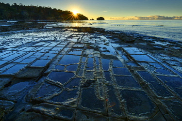 AUS3086AW Oceania, Australia, Tasmania, Eaglehawk Neck, Tessellated Pavement along the coastline