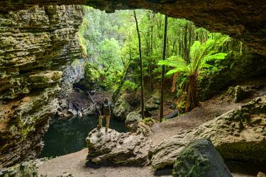 AUS3117AW Oceania, Australia, Tasmania, Tarkine Forest at Trowutta Arch. MR