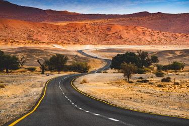 NAM6502AW Sossusvlei, Namib-Naukluft National Park, Namibia, Africa. Winding paved road among the sand dunes.