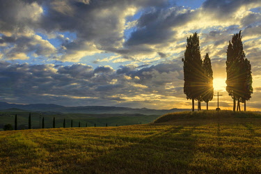 IBXDJS04636417 Tuscany landscape with cypresses, sunset, San Quirico d' Orcia, Val d' Orcia, Tuscany, Italy, Europe