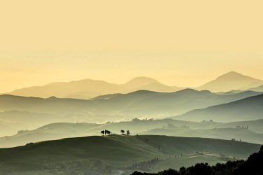 IBXDJS04636436 Tuscany landscape with hills at sunset, San Quirico d' Orcia, Val d' Orcia, Tuscany, Italy, Europe