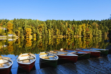 IBXMAN04630885 Rowing boats, Hollensteinsee, near Viechtach, Bavarian Forest, Upper Palatinate, Bavaria, Germany, Europe
