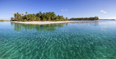 IBXNPR04652567 Solitary island in lagoon, beach with palm trees, turquoise water, Tikehau Atoll, Tuamotu archipelago, society islands, Windward Islands, French Polynesia, Oceania
