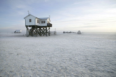 IBXRWI04633319 Pile dwelling, Sankt Peter-Ording, North Frisia, Schleswig-Holstein, Germany, Europe