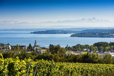 IBXDJS04635755 View of Lake Constance, in the back the Swiss Alps with Santis, Überlingen, Baden-Wurttemberg, Germany, Europe
