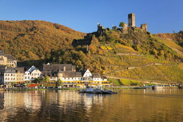 IBXMAL04638687 Beilstein and ruins of Metternich Castle with vineyard, Moselle, Rhineland-Palatinate, Germany, Europe