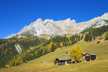 IBXREH04621605 Autumnal mountain landscape with alpine huts, behind the Eisenspitze, Dawin-Alpe, forest meadows, Strengen am Arlberg, Tyrol, Austria, Europe