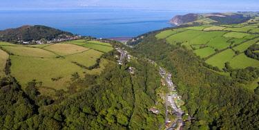 UK08272 United Kingdom, Devon, Exmoor, Lynton, wooded valley on the north Devon coast