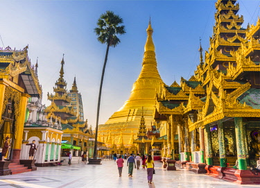 IBXVFW04484081 Golden Shwedagon Pagoda, main stupa, stupa, Shwedagon Paya, Shwedagon, Rangoon, Myanmar, Asia