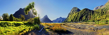 IBXRUM04420840 Panorama of Milford Sound, Mitre Peak, palm trees at low tide, Fiordland National Park, Te Anau, South Island, New Zealand, Oceania