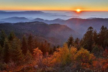 IBXRON04364318 Sunset at Schliffkopf, Autumn, Black Forest Road, Black Forest National Park, Northern Black Forest, Baden-Wurttemberg, Germany, Europe