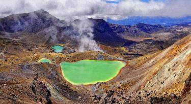 IBXRUM04407518 Green sulphurous lakes, Emerald Lakes in active volcanic Tongariro National Park, Manawatu-Wanganui, North Island, New Zealand, Oceania