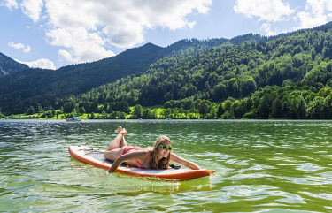 IBXMMW04403325 Young woman lying on a Standup-Paddle Board or SUP, paddling with hands in the lake, Schliersee, Upper Bavaria, Bavaria, Germany, Europe