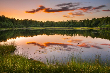 IBXJEK04445418 Lake with reflection in evening light, autumn, Schlaubetal Nature Park, wildlife reserve, Lieberoser moraine, Brandenburg, Germany, Europe