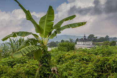 IBLDRN04396105 Villa Puttkamer, Governor's Palace, former residence of Jesko von Puttkamer, Buea, Southwest Region, Cameroon, Africa