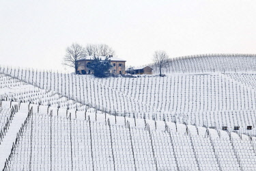 CLKDB83099 Langhe, Cuneo district, Piedmont, Italy. Langhe wine region winter snow, fontanafredda