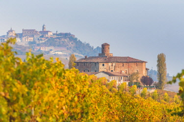 CLKFV87035 Barolo town and vineyards, Langhe, Piedmont, Italy
