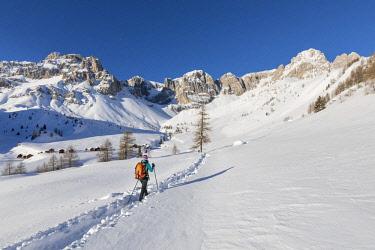 CLKGP85970 A trekker is walking to Fuciace, a small village in Dolomites near San Pellegrino Pass (Soraga di Fassa, Biois Valley, Trento province, Trentino-Alto Adige, Italy (MR)