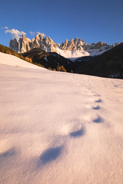 CLKMC84546 the Natural Park of Puez Geisler in Villnv?ssertal with some old footprints in the snow and the Geisler Group in the background, Bolzano province, South Tyrol, Trentino Alto Adige, Italy