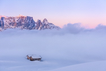 CLKMK88373 Alpe di Siusi/Seiser Alm, Dolomites, South Tyrol, Italy. Sunrise on the plateau of Bullaccia/Puflatsch. In the background the peaks of Sciliar/Schlern