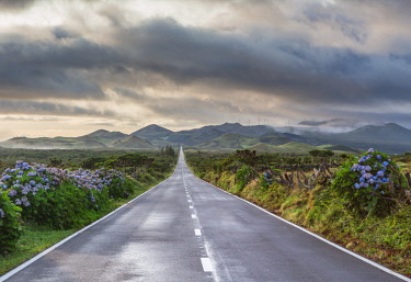 CLKFV88277 An empty and solitary road. Pico island, Azores islands, Portugal