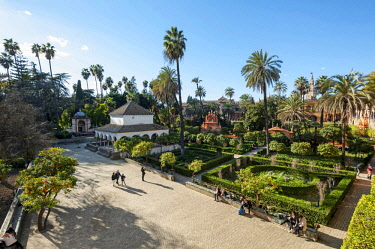 SPA7824 Spain, Andalucia, Seville. A view of the gardens of Seville's medieval Alcazar, or royal palace.