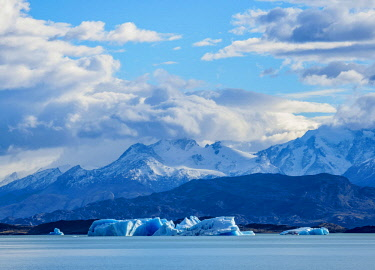 ARG2742AW Icebergs on Lake Argentino, Los Glaciares National Park, Santa Cruz Province, Patagonia, Argentina
