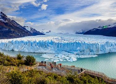 ARG2781AW Perito Moreno Glacier, elevated view, Los Glaciares National Park, Santa Cruz Province, Patagonia, Argentina